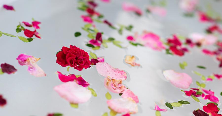 Bath & Beauty Gifts