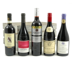 5 Premium Reds |  Medal Winning Fine Wines in a Crate