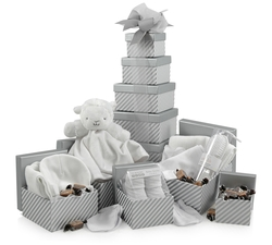Newborn Welcome Gift Tower | 5-Tier Gift Tower